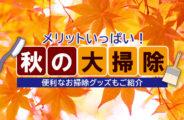 秋の大掃除
